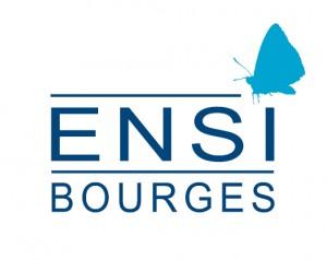 École_nationale_supérieure_d'ingénieurs_de_Bourges_(logo)