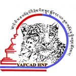 Logo leopard Yafcad